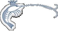 Australian Ocean King Prawn Company